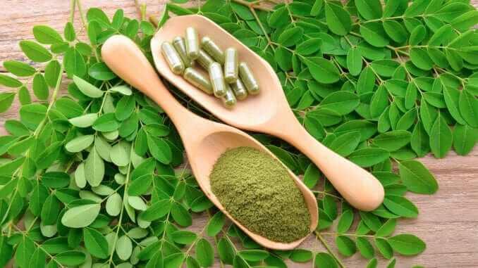 moringa leaf and powder capsule on wooden background