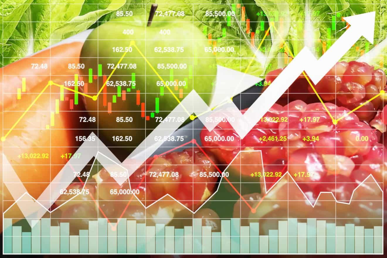 Stock financial index of successful investment on healthy food such as freshness fruit and vegetable with graph and chart growth up background.