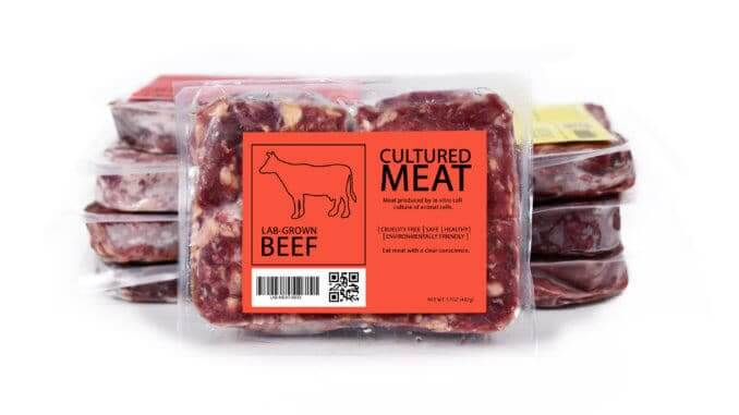 Cultured meat concept for artificial in lab grown vitro cell culture beef meat production with frozen packed raw meat with label on white background