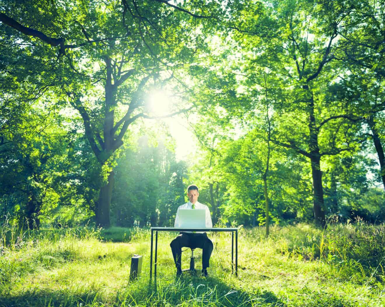 Environmental Conscious Businessman in Nature