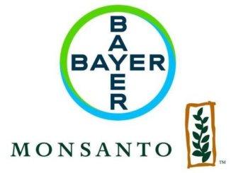 Bayer Monsanto