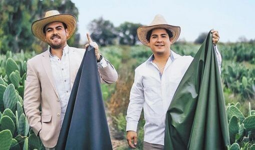 """Desserto: """"After Two Years of Research and Development, We Finally Finished Making Marketable Cactus Leather."""""""