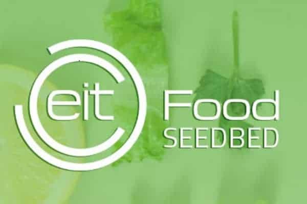 Fiberbio_seedbed