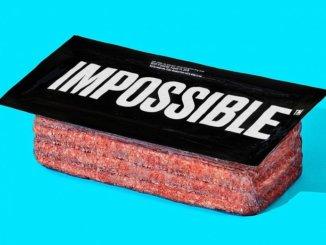 Impossible brick