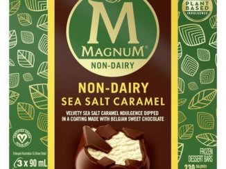 Magnum Non-Dairy Sea
