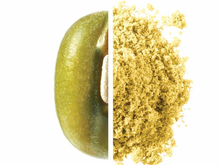 Mung Bean Protein JUST