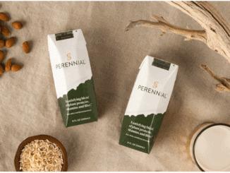 Perennial non-dairy milk