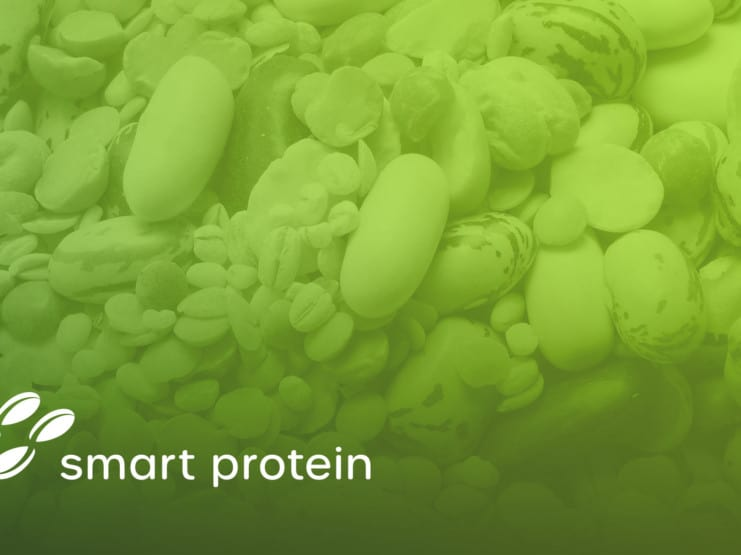 Smart Protein Project