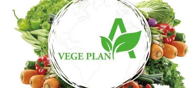 VegePlan Logo