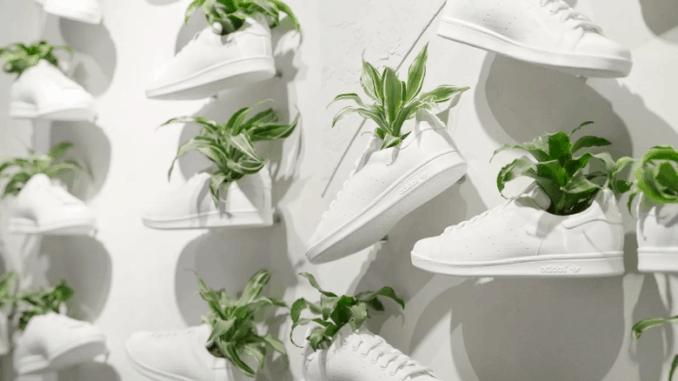 Adidas mushroom leather