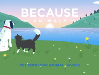 Because animals: vegane Tierfutter