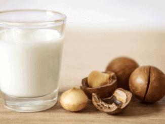 Ein Glas vegane Nussmilch von Milkadamia