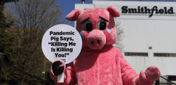 smithfield demo PETA
