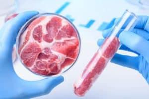 Laborfleisch, Clean Meat, kultiviertes Fleisch, In-Vitro-Fleisch
