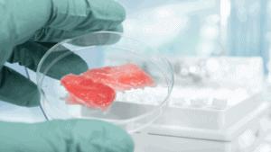 kulitivertes Fleisch (in-vitro-fleisch) im Labor