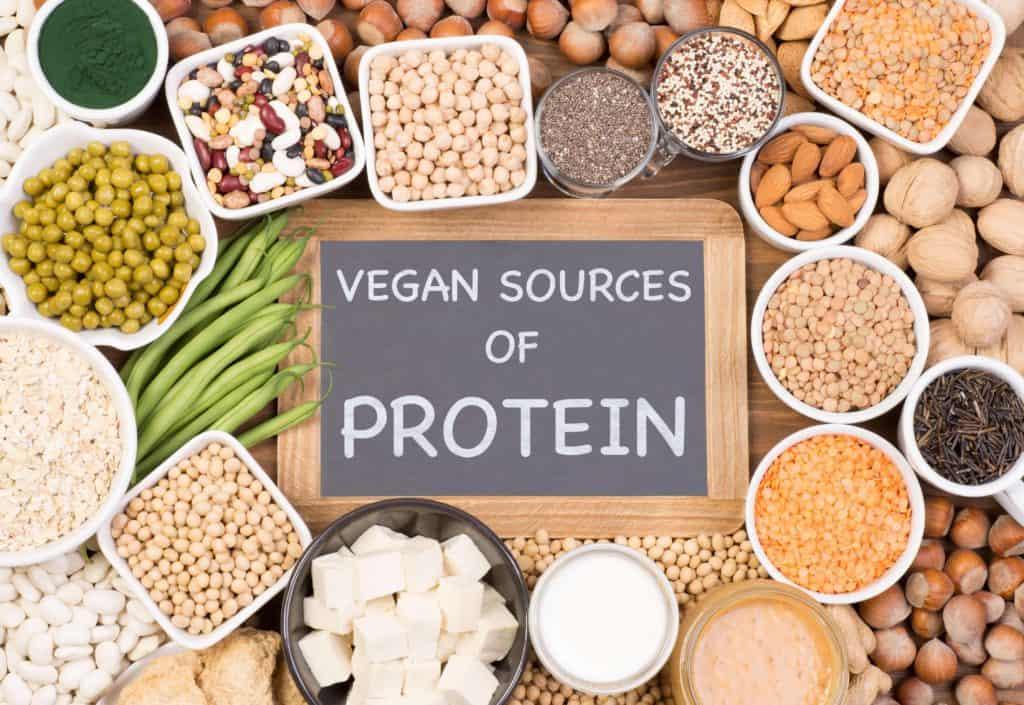 vegan source of protein pflanzliches eiweiß