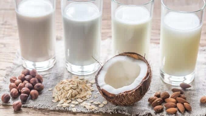 lait végétal