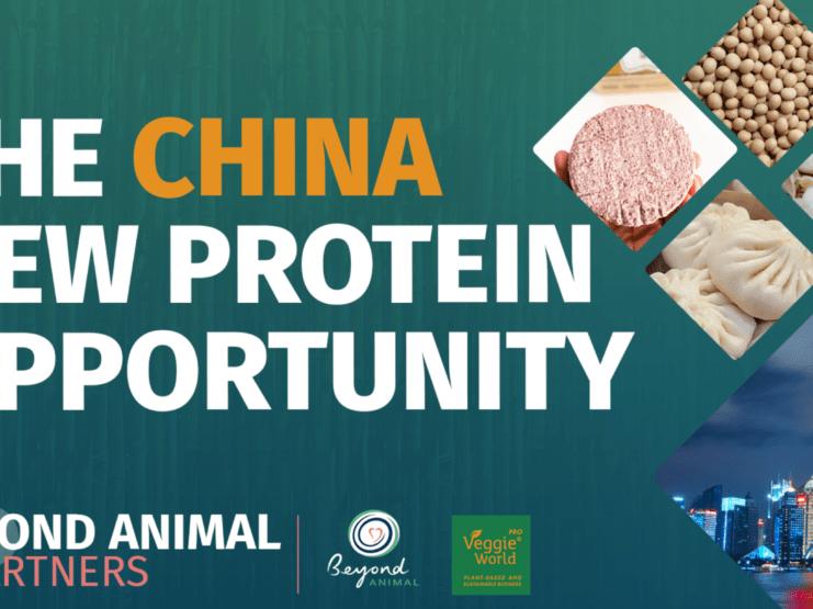 Beyond Animal聯同上海Veggie World舉辦中國替代蛋白網上高峰會